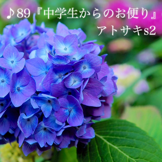 IMG_3475.JPG